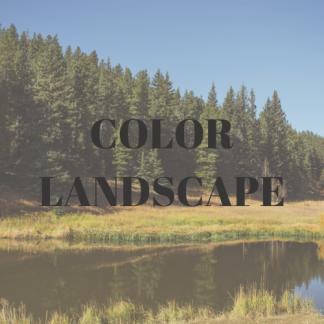 Landscape Photography- Color